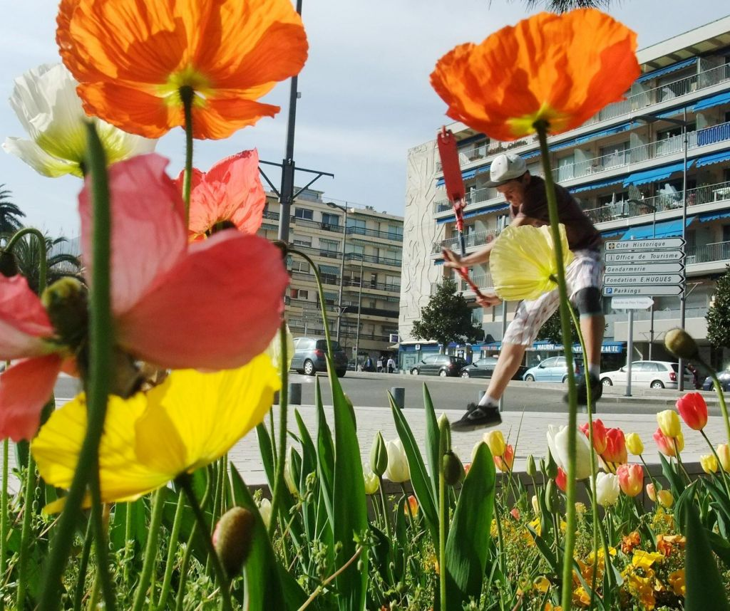http://trotirider.com/forum/userimages/4/photo-de-printemps-remy.jpg