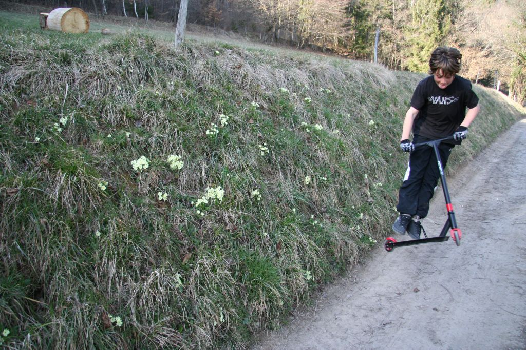 http://trotirider.com/forum/userimages/4/tibo-trott-printemps-5.jpg