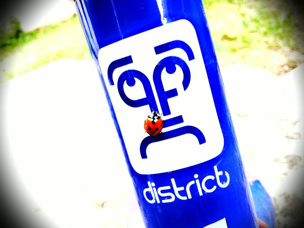 http://trotirider.com/forum/userimages/6/District.jpg